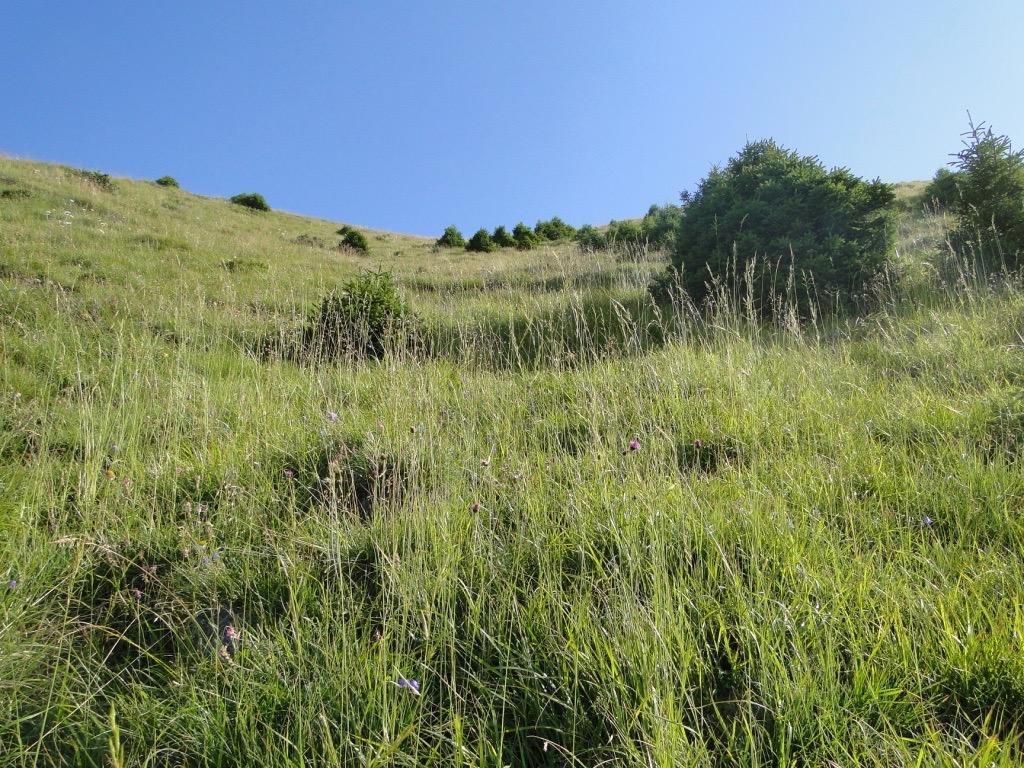 Boucle du Mont Charvin Dsc07398