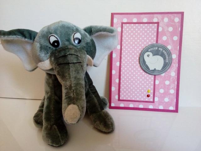 carterie de Marie jo Dumbo15