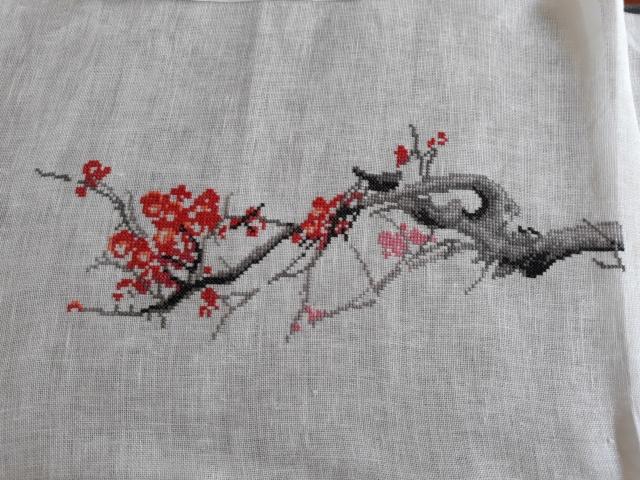 Cerisier en fleurs - Charivna Mit 20190410