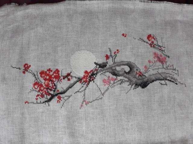 Cerisier en fleurs - Charivna Mit 20190510