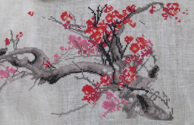 Cerisier en fleurs - Charivna Mit - Page 2 Img_0921