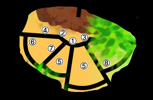 [Descrição] Área Central de Konoha Konoha13