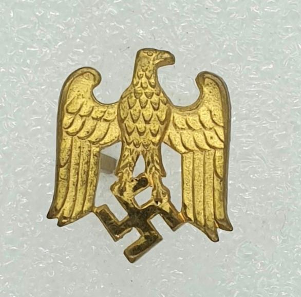 Petit aigle allemand 20210810