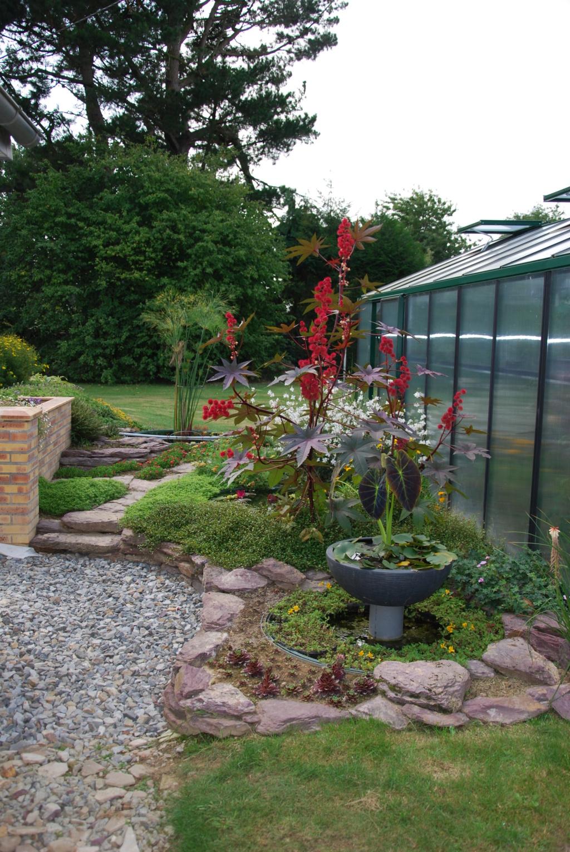 Jardin d'eau de Logan Dsc_1619