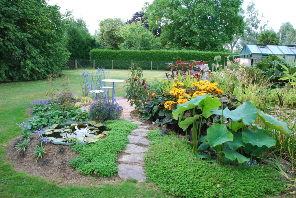 Jardin d'eau de Logan Dsc_1711