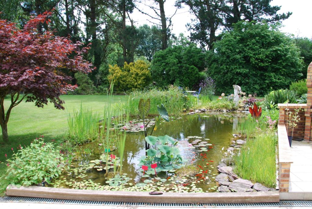 Le jardin c'est la santé, rien faire c'est la conserver  : hamacs et autres chaises longues  Dsc_2128