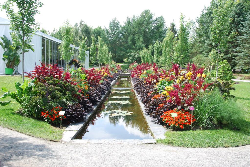 Parc Marie-Victorin (Canada) - Page 2 Dsc_2624