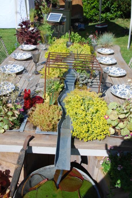 Fête des plantes de Bagnole de l'orne - Page 2 Dsc_3522