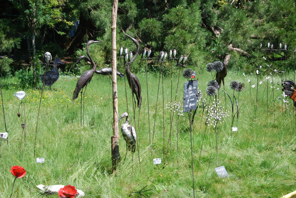 Fête des plantes de Bagnole de l'orne - Page 3 Dsc_3619