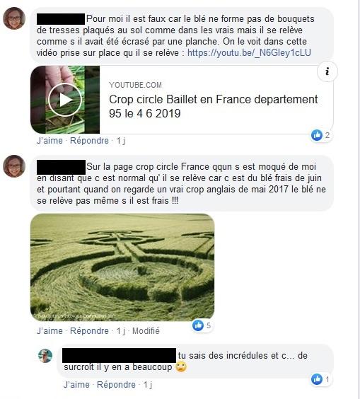 Crop circle à Baillet-en-France (95) - Page 2 Baille25