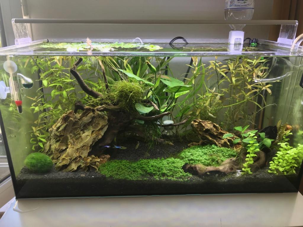Fuite sur le fond de mon aquarium Img_0815