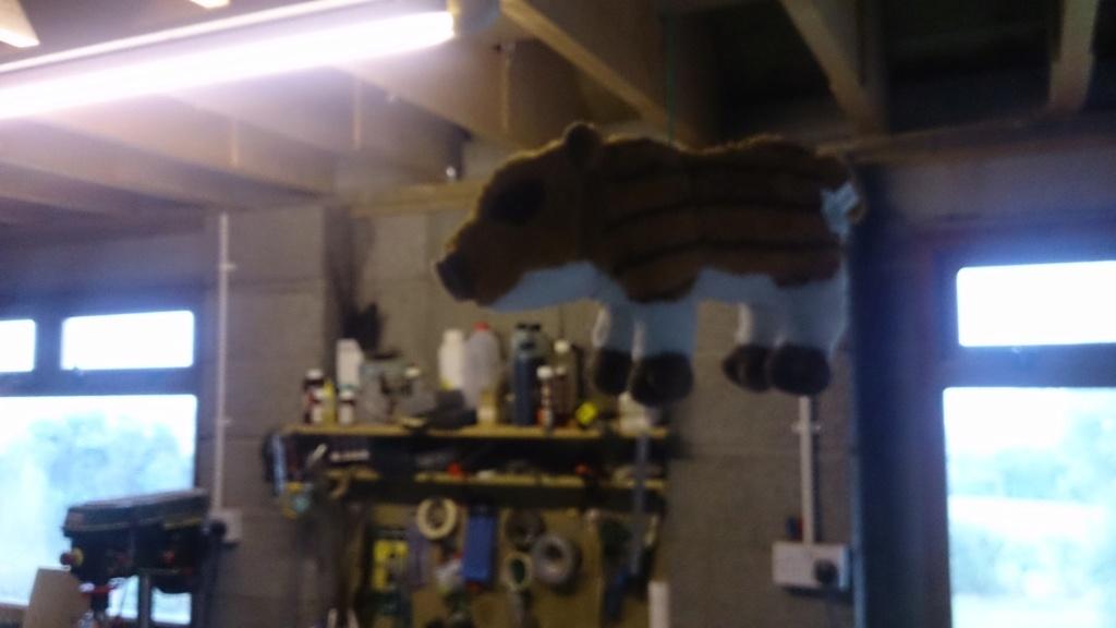 Nouvelles recrues pour l'atelier cuir Dsc_0610