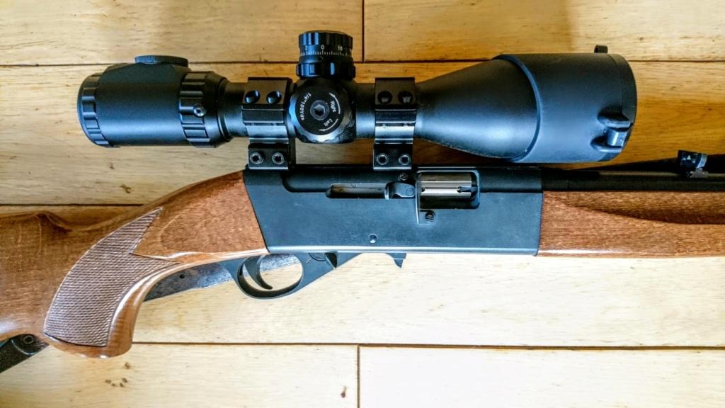 carabine 22LR Dsc_3511
