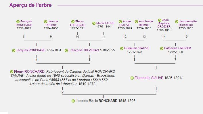 Darne Canons damas Roncha10
