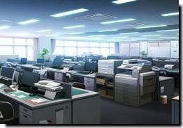 Bureaux de l'Organisation