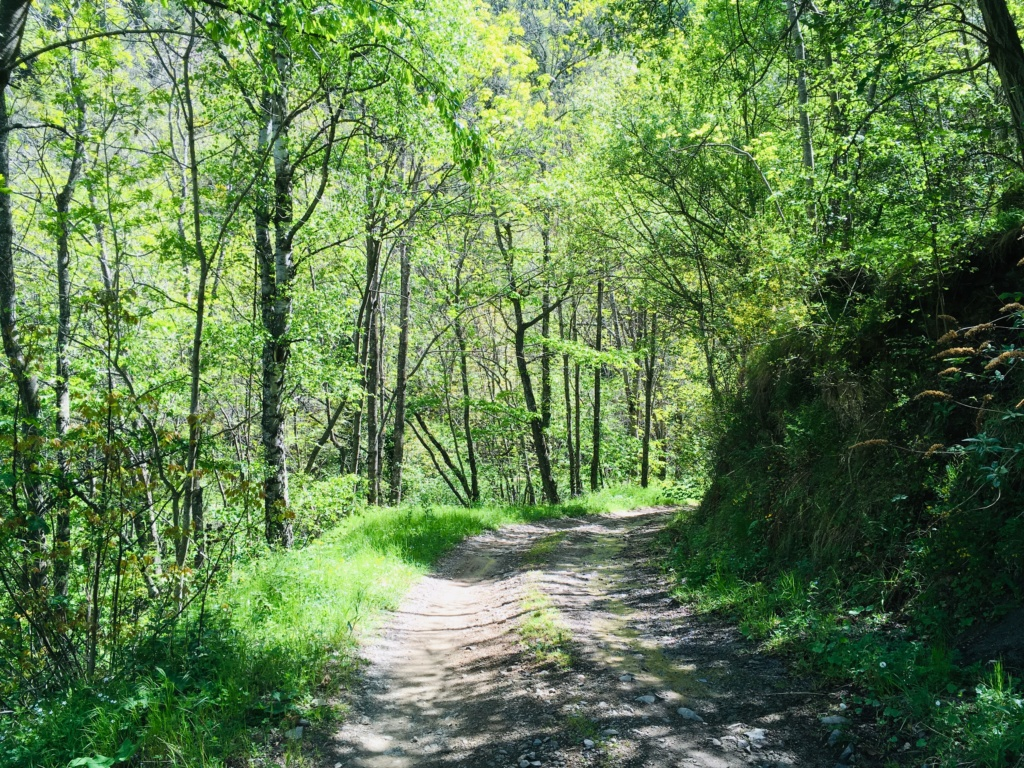Pyrénées-Orientales - Mai 2019 Img_2417