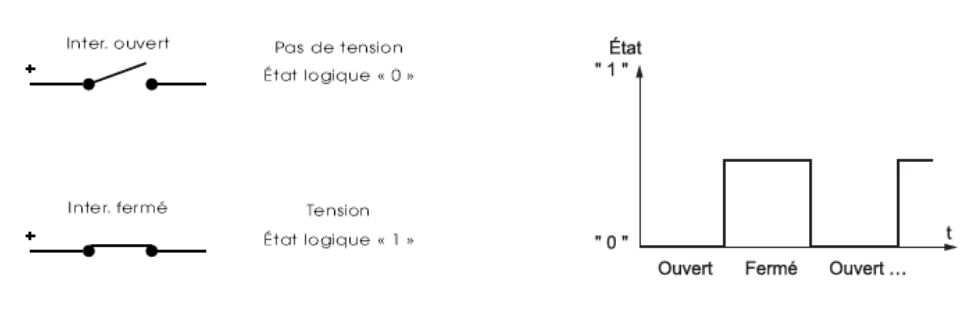 Le multiplexage 1310