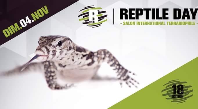 Reptile day Arras 04 novembre 2018 36504010