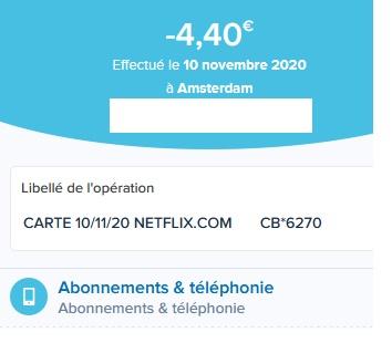 Star sur Disney+ à partir du 23 février 2021 - Page 3 Netfli10