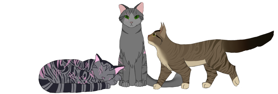 WindClan Ceremony Requests Sigg13