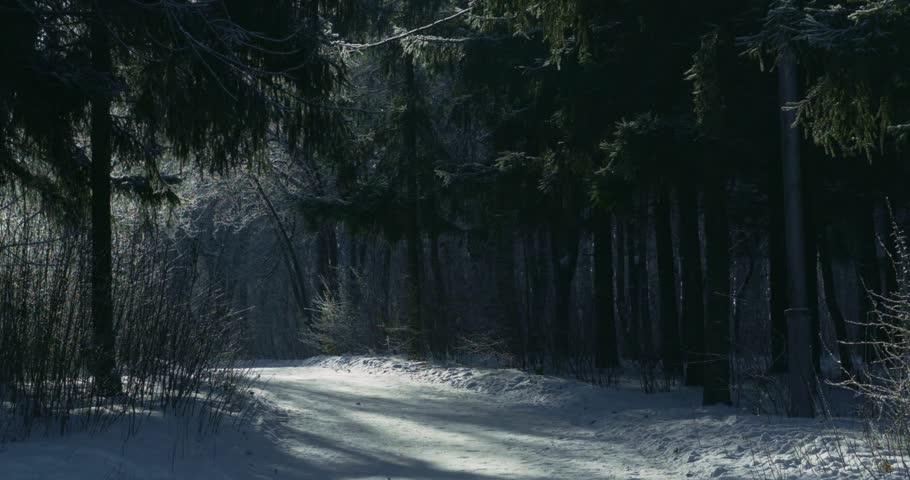 Announcements Winter10