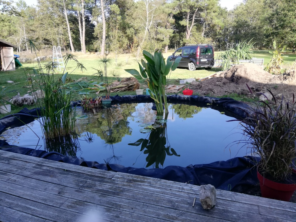 Projet de bassin Img_2024