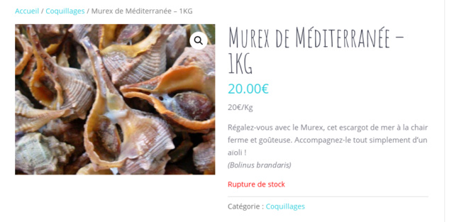 Acide pour batteries Murex10