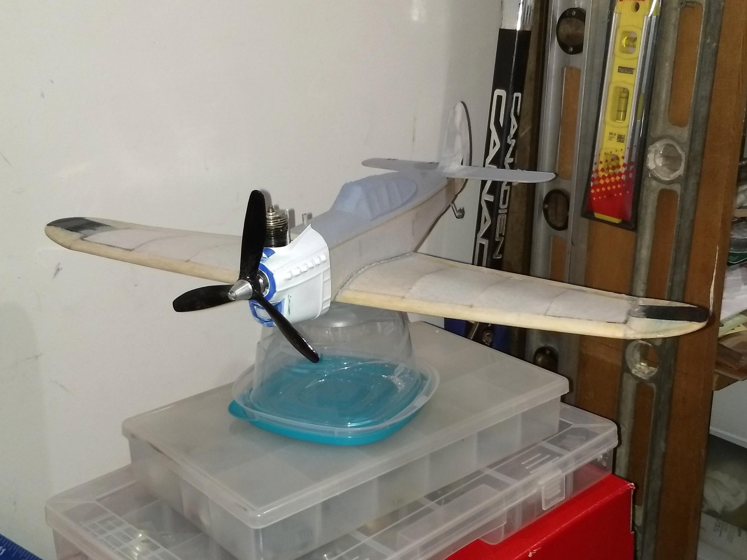 DPC Models/AeroWerkes Scientific P-40 Red Tiger Reproduction Img_2218
