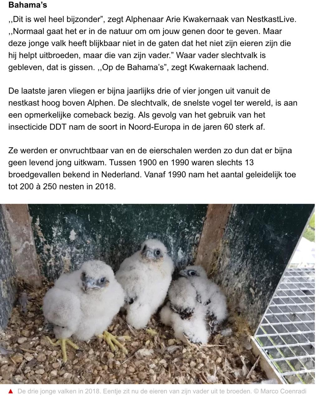 Alphen a/d Rijn. V. KX .Deventer 2012 ~ M. LO Wormer 2014 - Pagina 8 Scher561