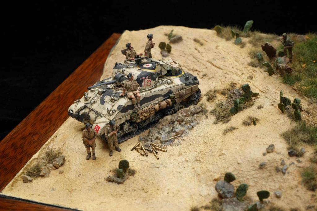 Diorama de Shermans sur tous les fronts !  14102311