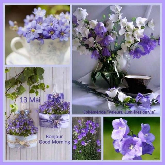 Mercredi 13 mai Fb_i1105