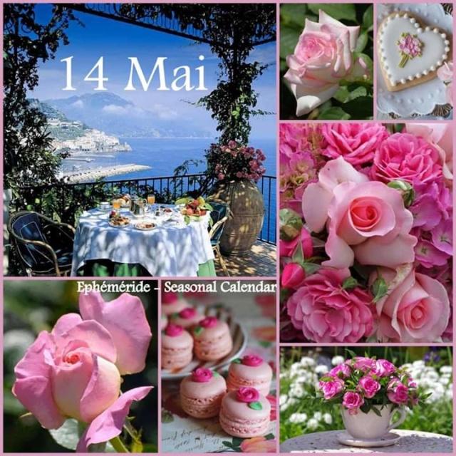 jeudi 14 mai Fb_i1113