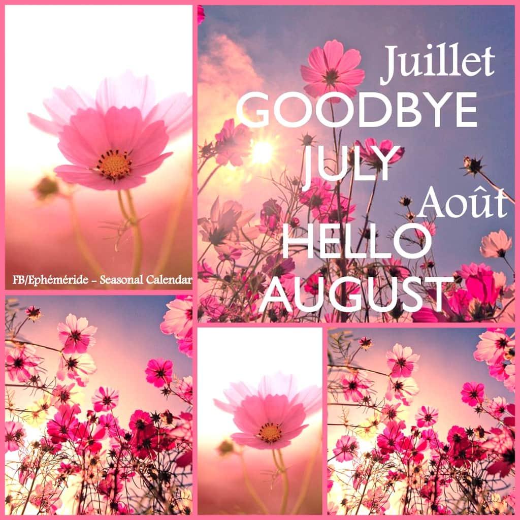 Samedi 1er août Fb_i1469