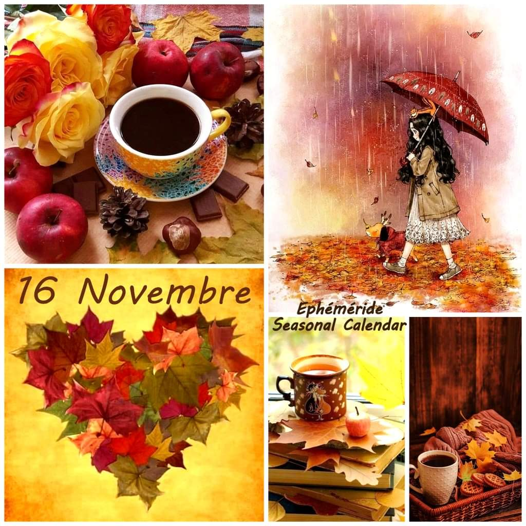 Lundi 16 novembre Fb_i1822