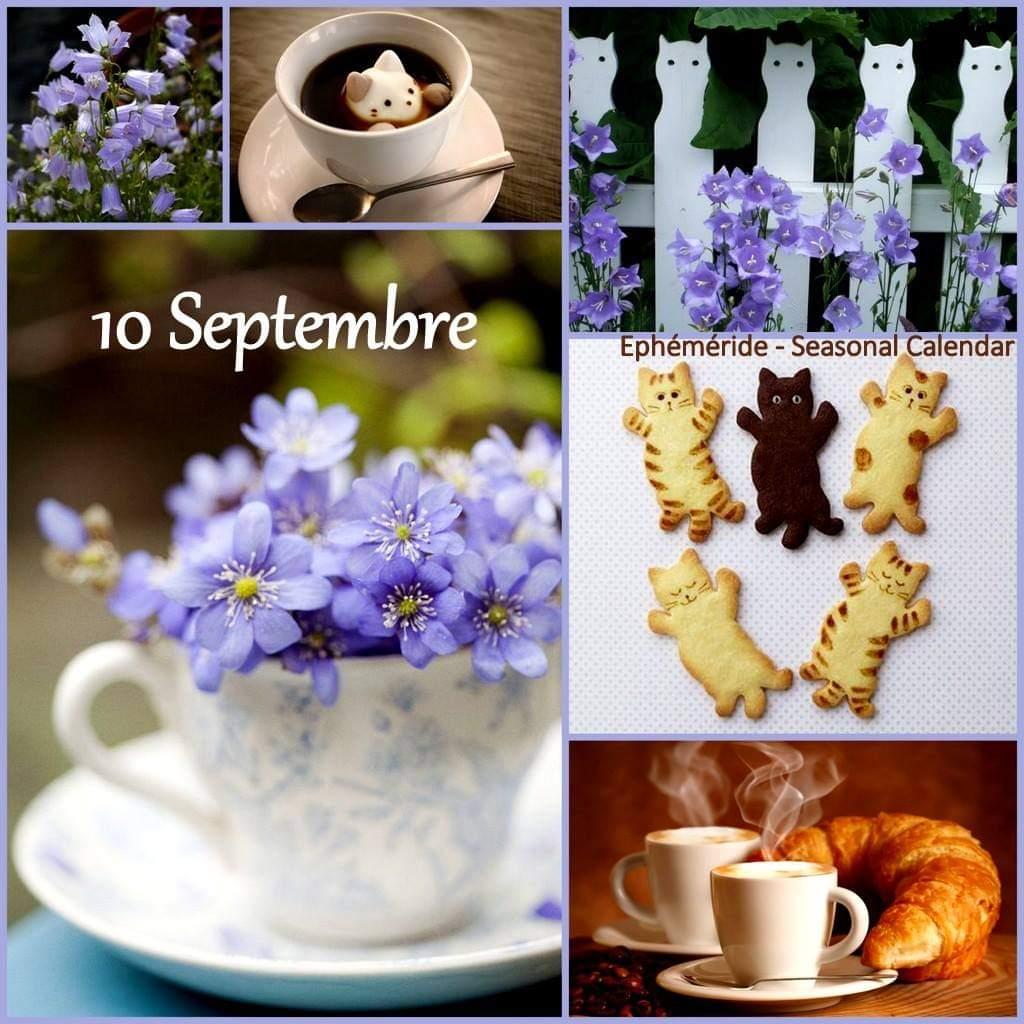 Vendredi 10 septembre. Fb_i2873