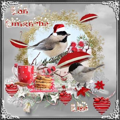 Dimanche  8 décembre  Fb_im455