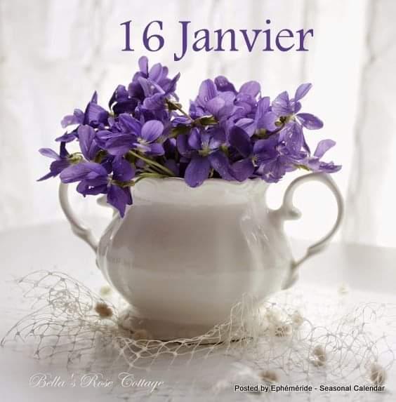 Jeudi 16 janvier  Fb_im631