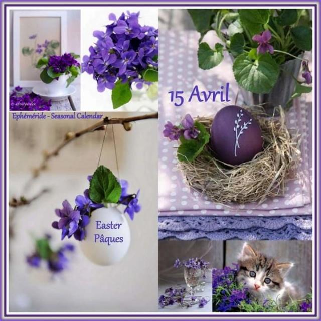 mercredi 15 avril Fb_im973