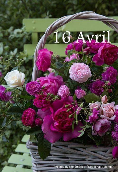 Jeudi 16 avril Fb_im978