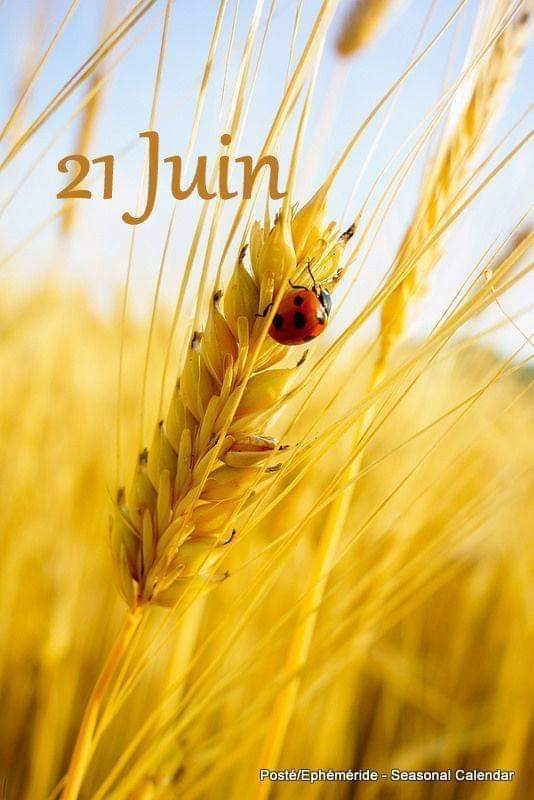 Vendredi 21 juin  Fb_img41
