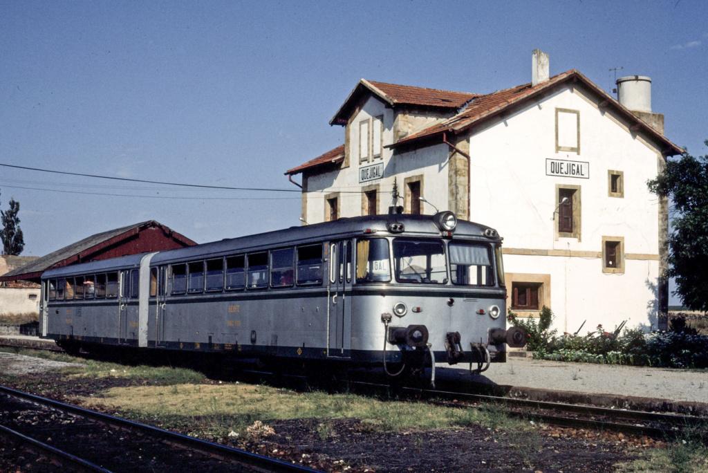 Ferrobus RENFE serie 591 a escala G 32147111