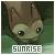 Pokemon Sunrise (Top partenaire) Parten13