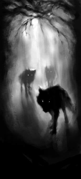 Bêtes noires. C11e7010