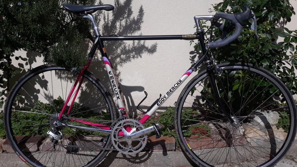 EDDY MERCKX Corsa Extra 20210318