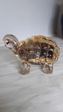 Murano Tortoise Help 20181026