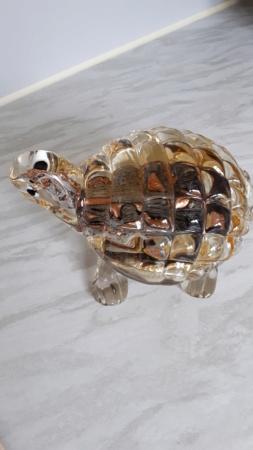 Murano Tortoise Help 20181027