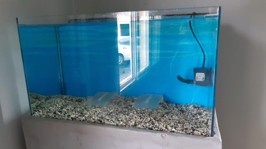 Recifal bac 80 litres 20200711