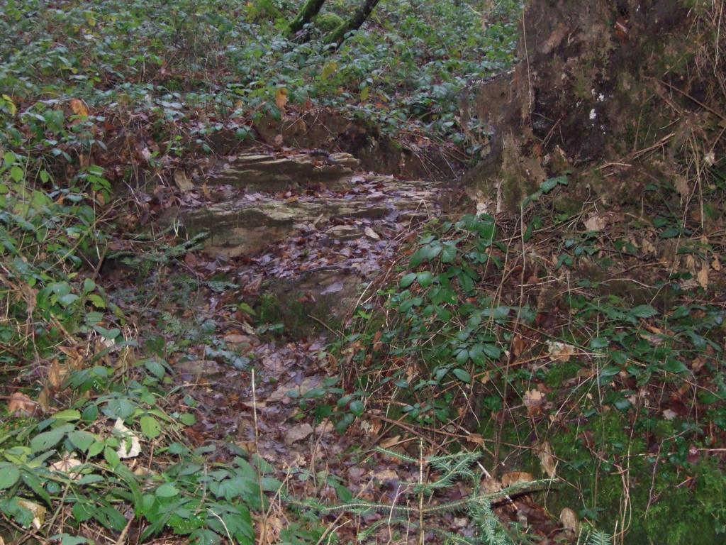SPOT plateau de CITA zone 1 Dscf1011