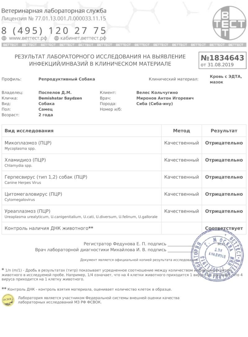 DEMISHSTAR SAYDZEN (Шмель) г. Москва Aaaaa_12