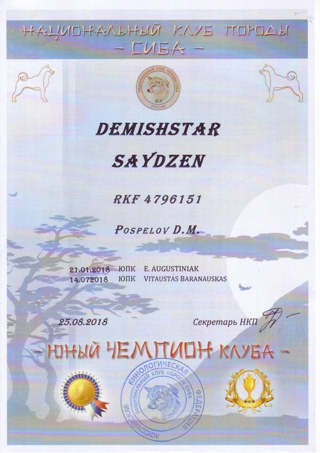 DEMISHSTAR SAYDZEN (Шмель) г. Москва Image011